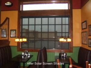 Solar Screen Shades, The Pub, Lexington, KY